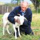 Se casa con una cabra en una iglesia satánica