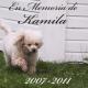 En Memoria de Kamila – 2007-2011
